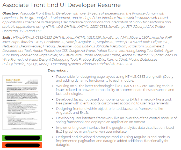 associate frontend ui developer cv sample