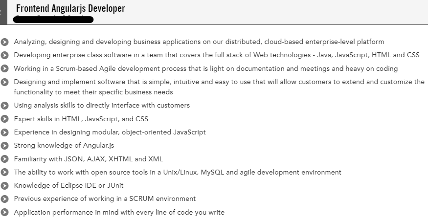frontend angularjs developer resume example