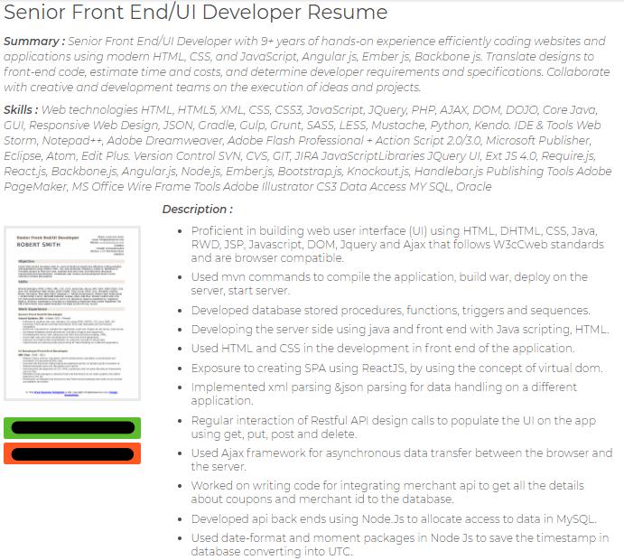 sr. frontend ui developer resume example
